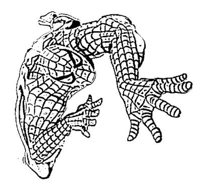 SPIDERMAN_PARA_COLOREAR_14