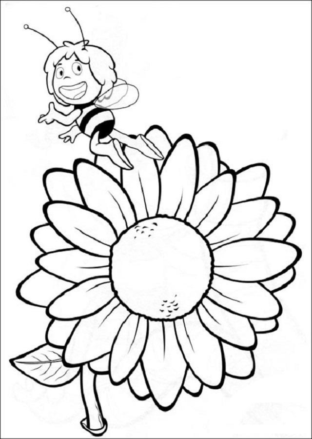 abeja-maya-en-un-girasol – Dibujos para colorear