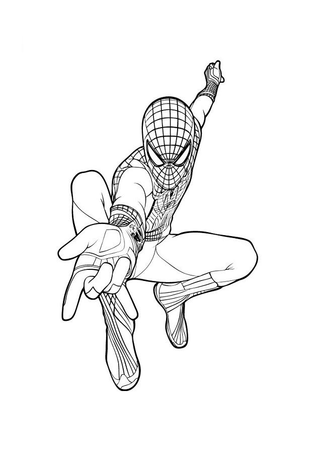 Spiderman Dibujos Para Colorear