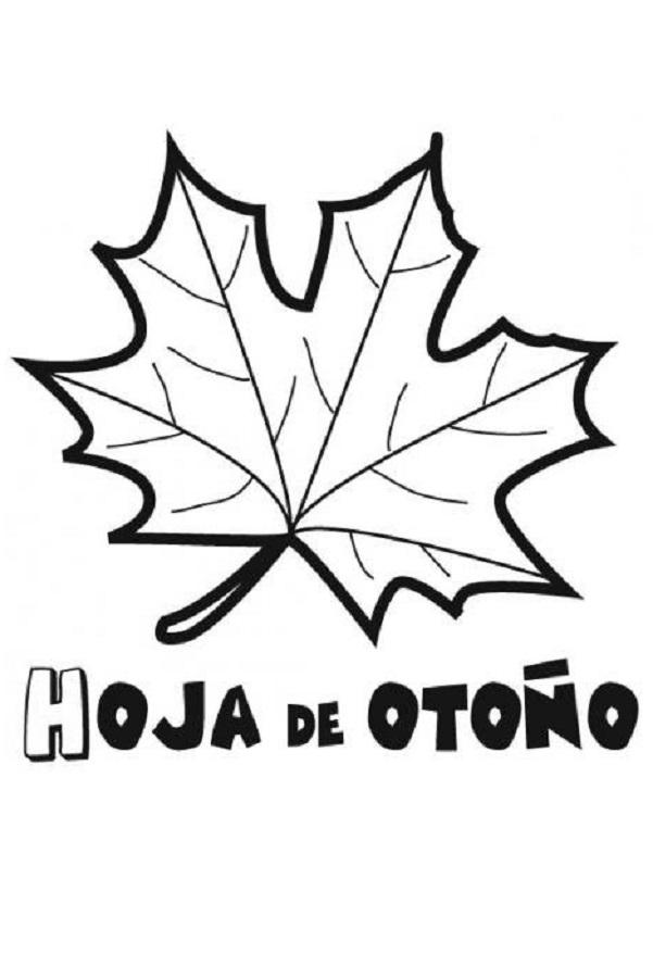 dibujos-de-hojas-de-otono-para-colorear