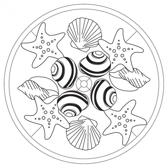 mandalas verano estrellas conchas y caracolas - Dibujos para colorear