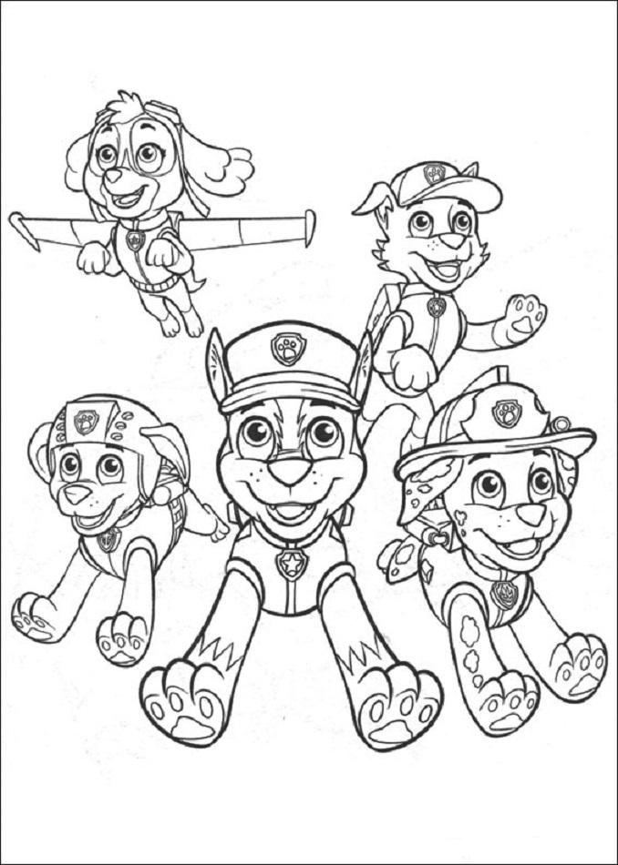 Chase, Marshall, Rocky, Zuma y Skye, la patrulla canina