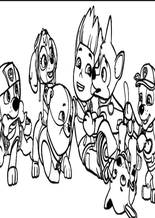 La Patrulla Canina Dibujosparacolorear Eu