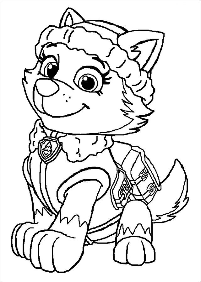 💠La Patrulla Canina - Dibujos para colorear