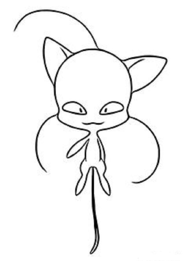 Plagg (Plaga en Latinoamérica) es un kwami que está conectado con el Gato Miraculous y con su poder, su portador puede usar el anillo para transformarse en un superhéroe con tema de gato.