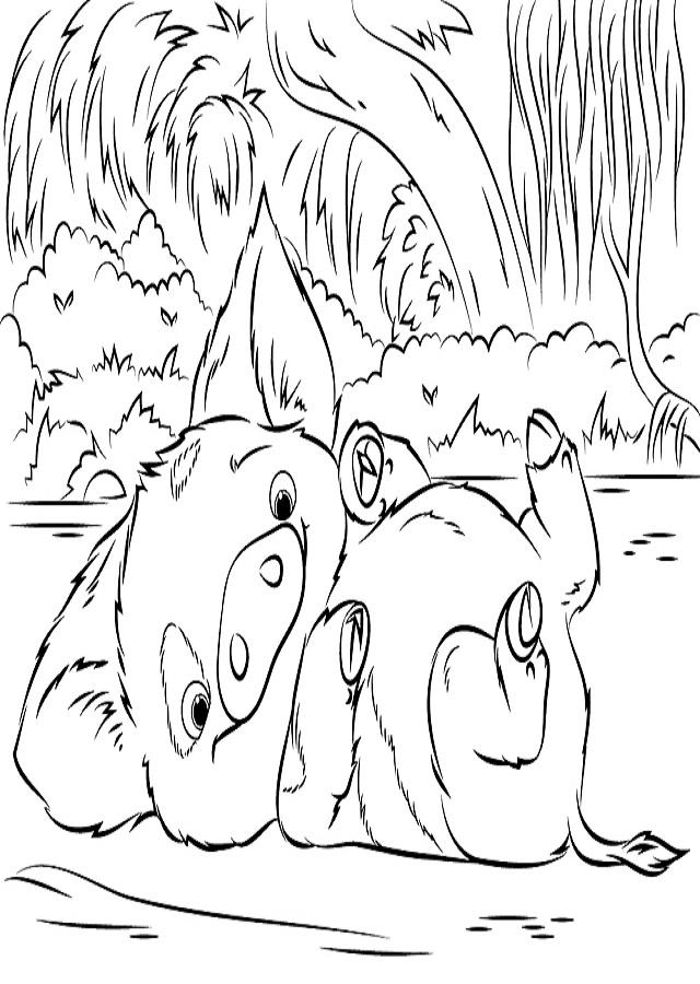 dibujo para colorear de Pua el amigo de Moana-Vaiana