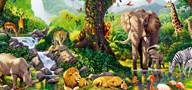 Dibujos De Animales Para Colorear Dibujos Para Colorear