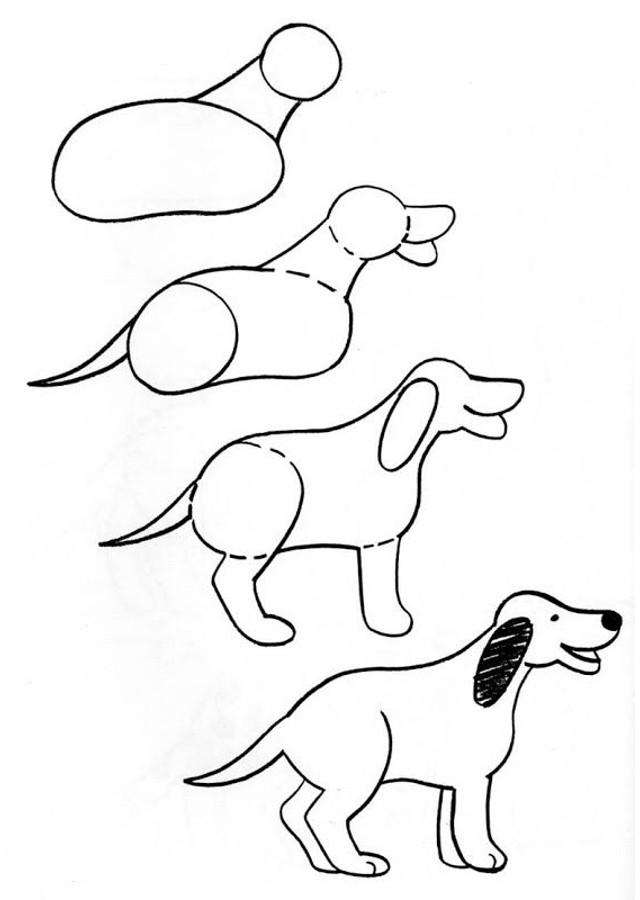 Dibujos para colorear de animales para ni os dibujos - Dessiner un yorkshire ...
