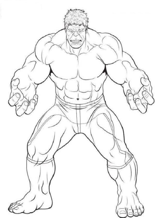 Una enorme dosis de radiación gamma transformó el ADN del brillante pero enclenque científico Bruce Banner y despertó el héroe oculto en sus genes que se alimenta de adrenalina... ¡Hulk! Este, héroe de pocas palabras y fuerza increíble, estuvo mucho tiempo perseguido por los que quieren aprovecharse de su inmenso poder y por los que creían que la ira del gigante de jade era demasiado peligrosa para ser controlada. Ahora, como miembro de Los Vengadores, Hulk ayuda a aplastar amenazas inimaginables que ningún héroe podría combatir a solas, con la esperanza de demostrar al mundo que es el héroe más fuerte de todos.
