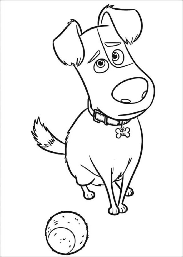 Es un perro que al principio lidera a los demás animales de los apartamentos, donde vive con su dueña Katie. Pero cuando su ama adopta a Duke, ve en peligro su situación y, tras una disputa con él, se encontrará en la calle. A partir de entonces, luchará por buscar el camino de vuelta a casa.