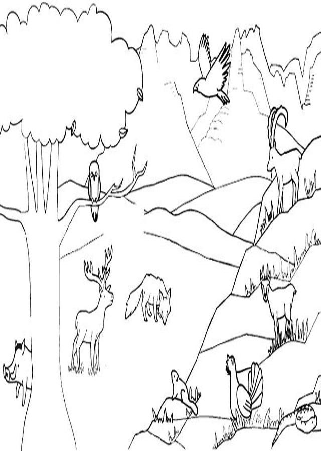 Montana Dibujos Para Colorear
