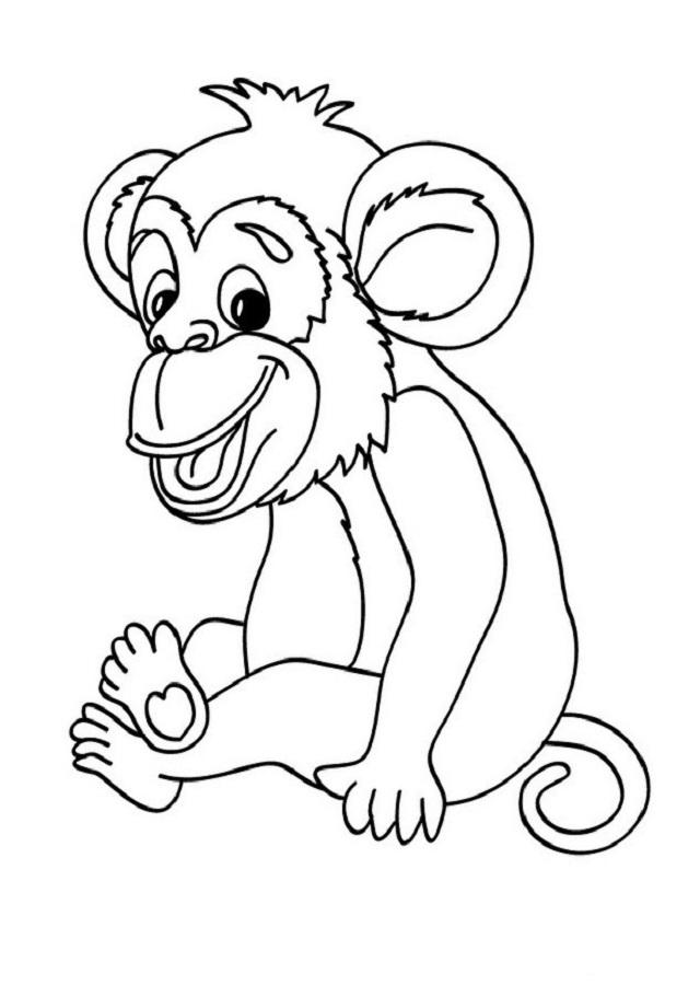 Animales Salvajes Dibujos Para Colorear