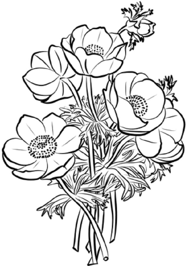 De 150dibujos De Flores Para Imprimir Y Colorear Gratis