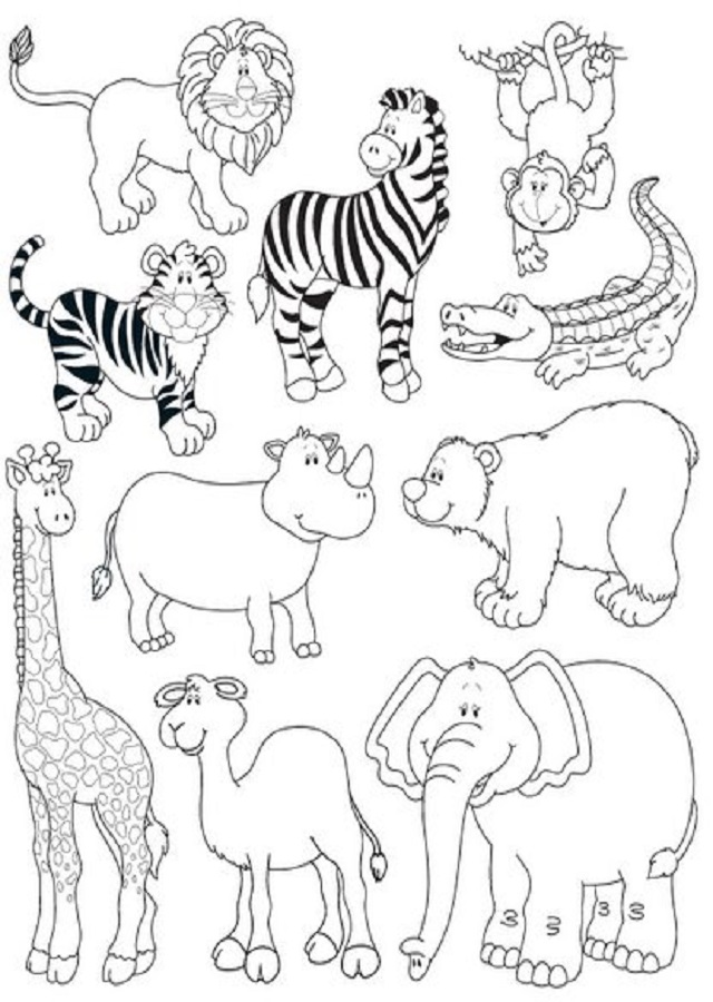 ▷Animales salvajes - Dibujos para colorear
