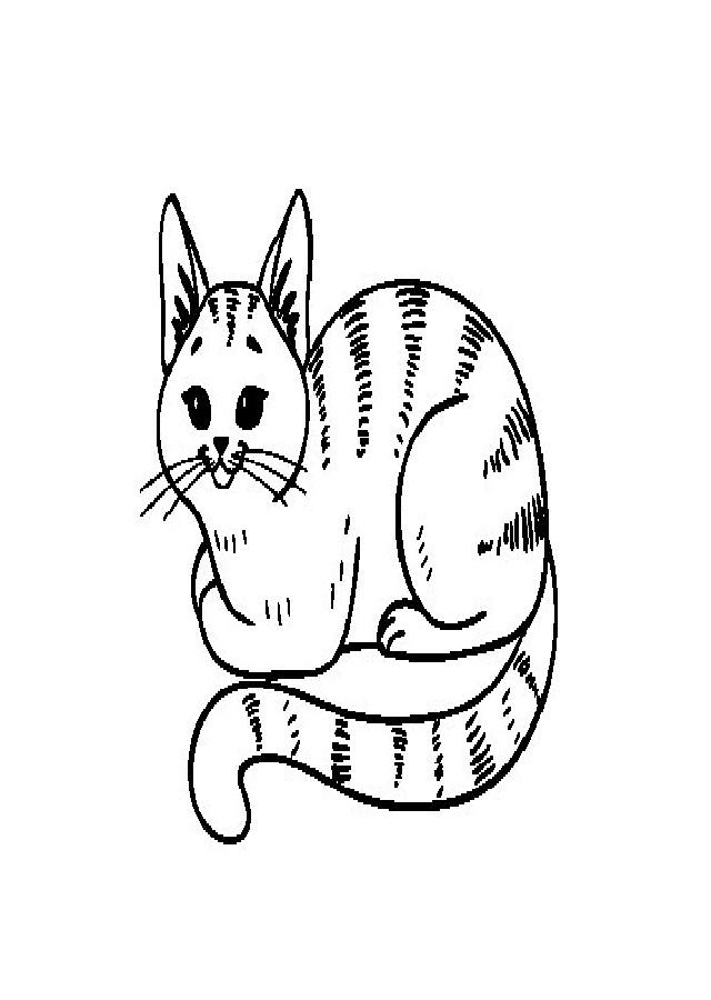 Gatos Para Colorear Dibujos Para Colorear