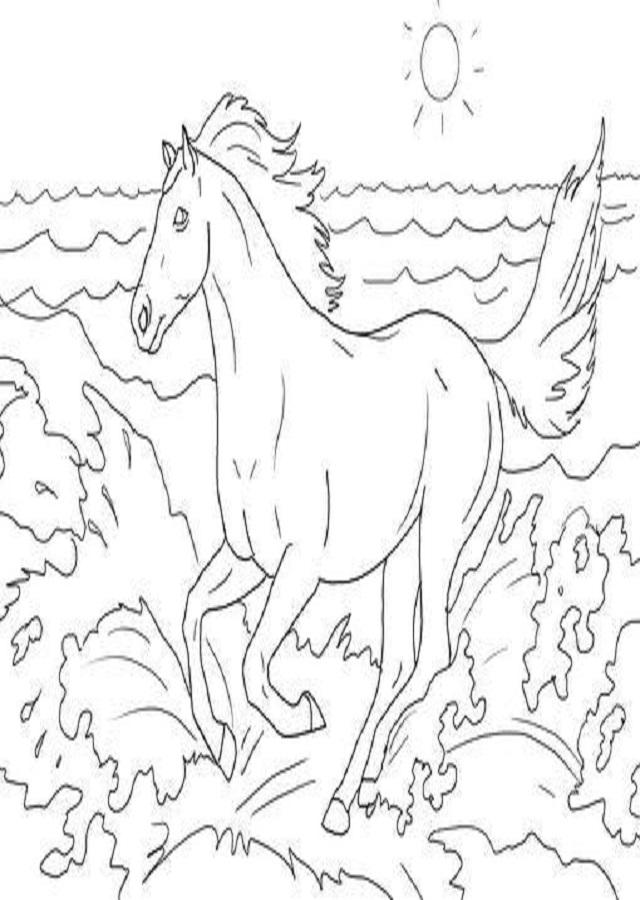 dibujo para pintar caballo corriendo por el campo