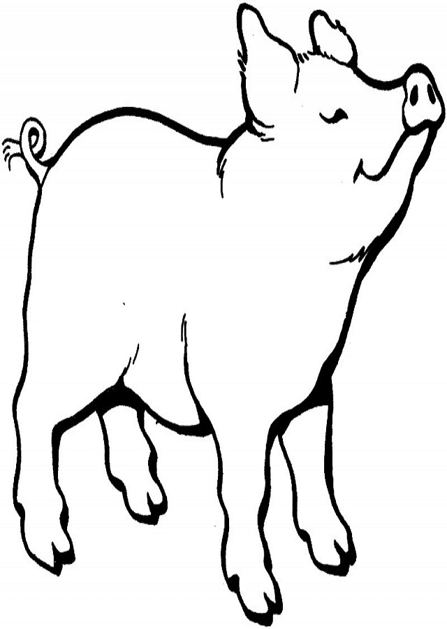 Cerdos Para Colorear Dibujos Para Colorear