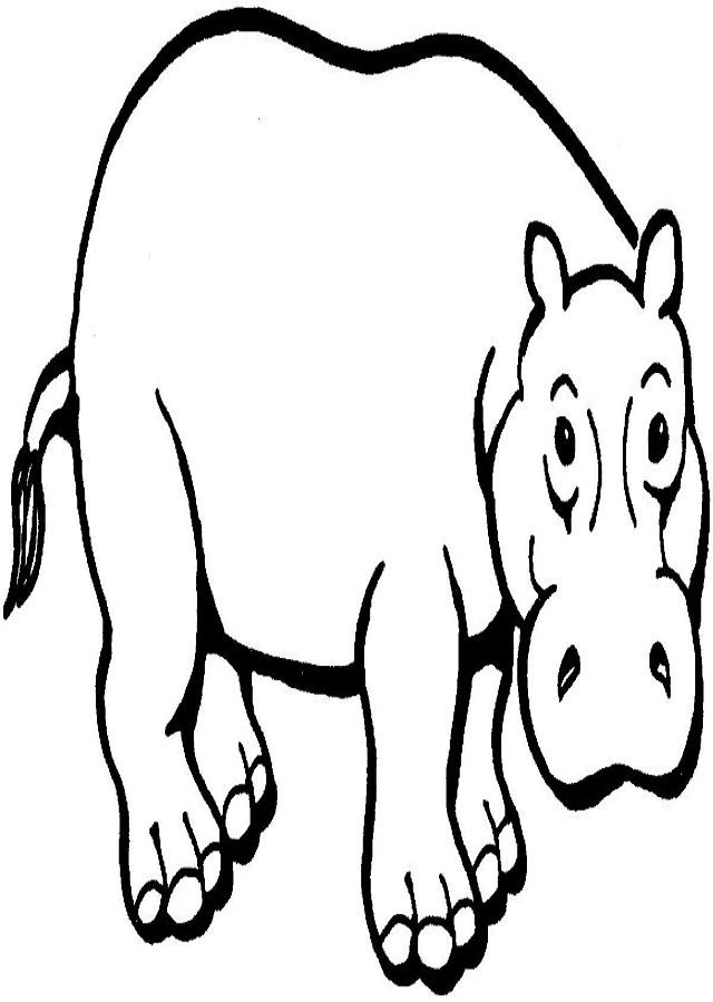 dibujos-de-hipopotamos-para-pintar - Dibujos para colorear