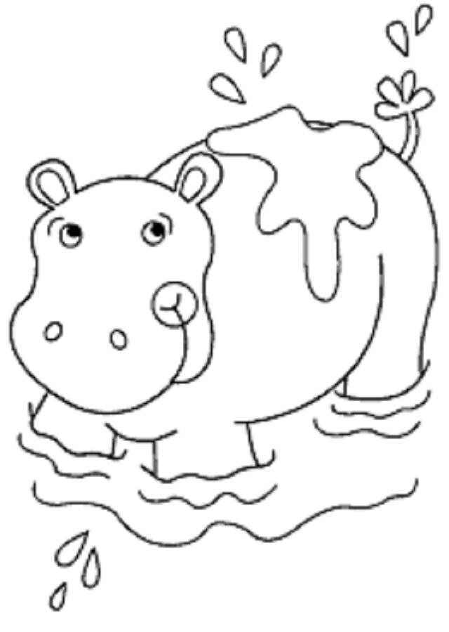 hipopotamo - Dibujos para colorear