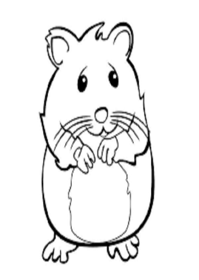 Excelente Bebé Hamster Para Colorear Elaboración - Ideas Para ...