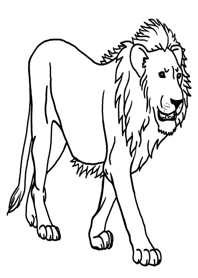 dibujo león para pintar