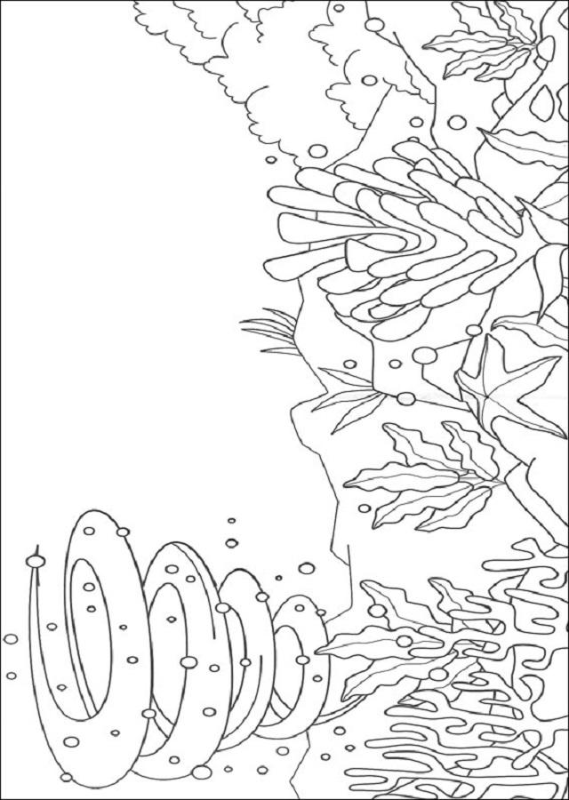 dibujo fondo del mar para colorear