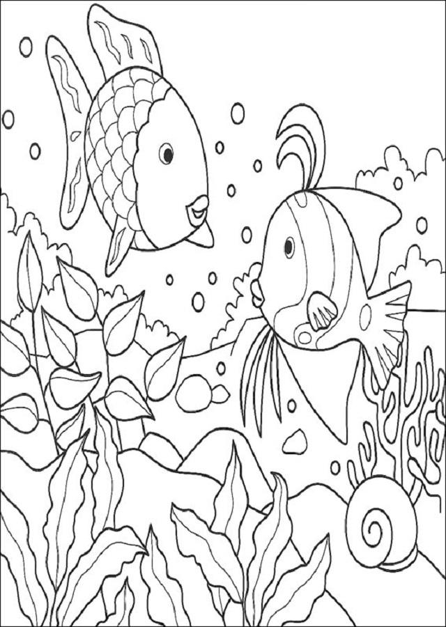 imagen pez arcoiris para pintar e imprimir