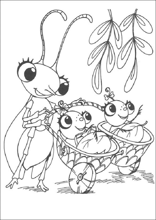 Miss-spider-bebes