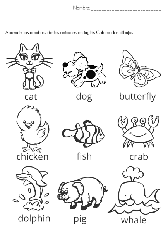 vocabulario animales ingles primaria