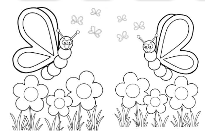 Mariposas en el campo para colorear