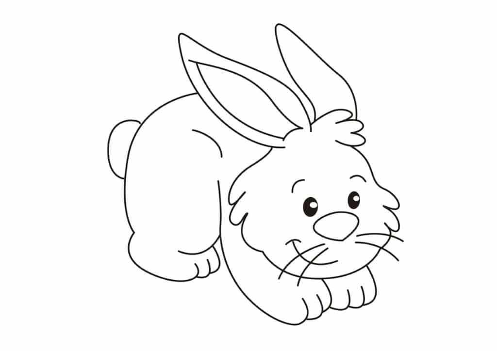 dibujos conejos bebes tiernos para colorear